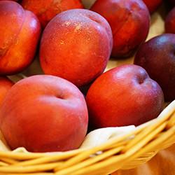 写真:果実2